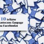 10 trików na skuteczny fanpage szkoły językowej na Facebooku